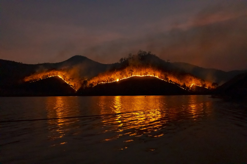 A photo of a bushfire